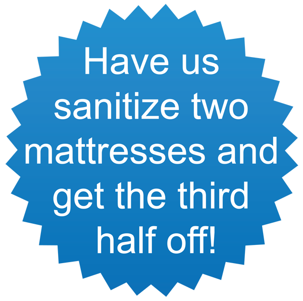 Third Mattress Half Off